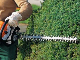 Tagliasiepi – Alleati numero uno di chi fa giardinaggio